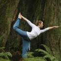yoga_by_tree