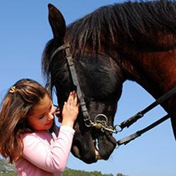 horse_girl