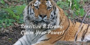 Sensitive & Strong: Claim Your Power @ Metamorphosis Center | Savage | Minnesota | United States