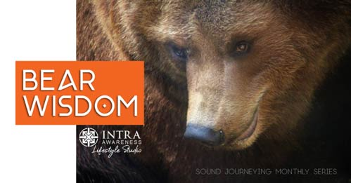 Bear Wisdom | Sound Journeying Monthly Series @ IntraAwareness Lifestyle Studio | Minneapolis | Minnesota | United States