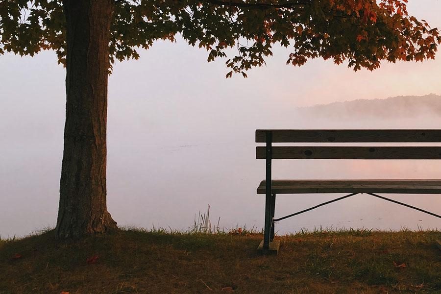 refreshing autumn fighting negativity
